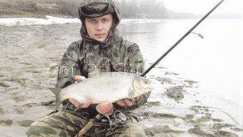 жерех и судак весной рыбалка